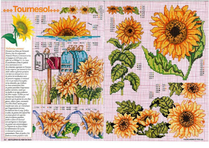 Gallery.ru / Фото #71 - Encyclopedie Fleurs Arbres et Feuilles - patrizia61