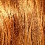 A Homemade Avocado Hair Treatment for Soft and Shiny Hair