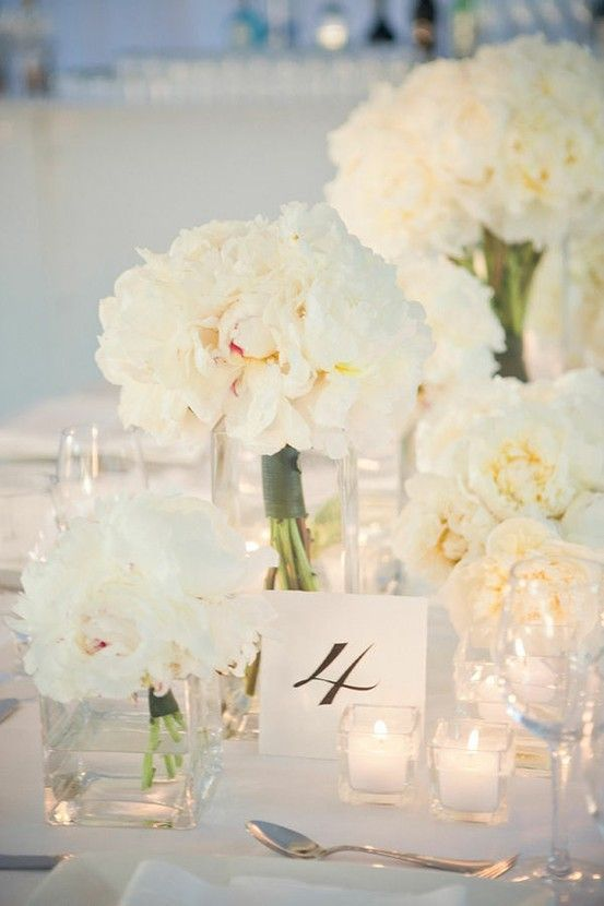 Peonies w/ wrapped stems in simple square glass vases (Party Resources)