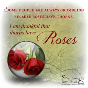 """Some people are always grumbling because roses have thorns; I am thankful that thorns have roses."" ~ Alphonse Karr   _More fantastic quotes on: https://www.facebook.com/SilverLiningOfYourCloud  _Follow my Quote Blog on: http://silverliningofyourcloud.wordpress.com/"