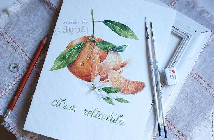 """Купить Акварель """"Сочный мандарин"""" - комбинированный, акварель, акварельный рисунок, мандарин, картина в подарок"""