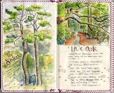 Journal page by Cathy Johnson  Another nature & art collaboration