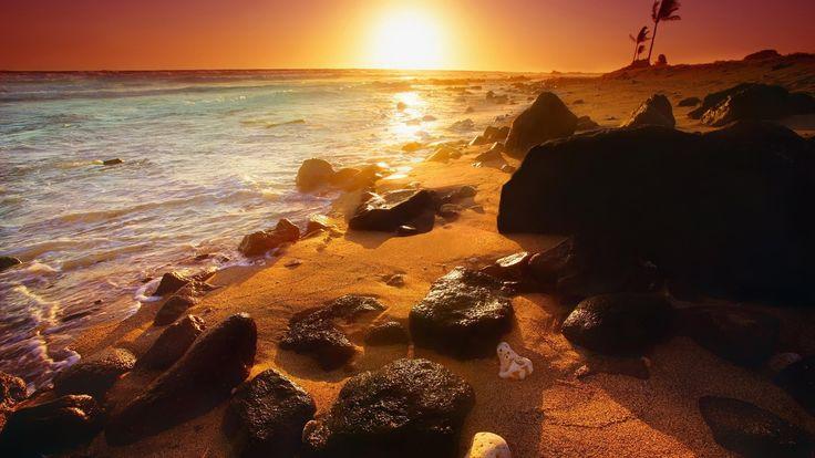 Summer Sunset Wallpaper-3