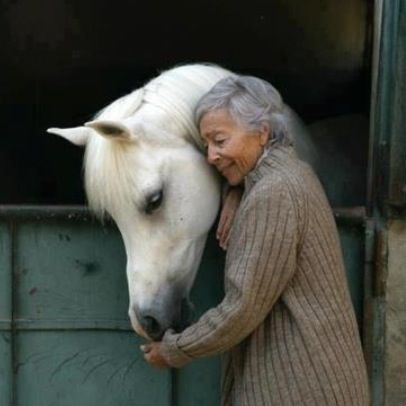 """""""Riding a horse is not a gentle hobby, to be picked up and laid down like a game of solitaire. It is a grand passion. It seizes a person whole and once it has done so, he will have to accept that his life will be radically changed."""" -Ralph Waldo Emerson"""