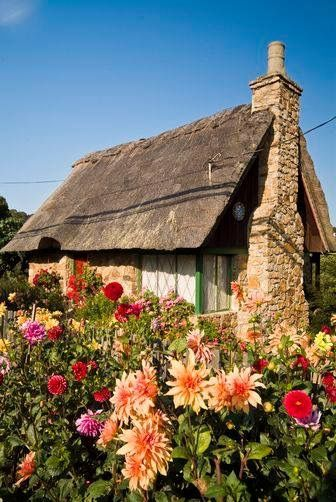 PERFECT LITTLE COTTAGE GARDEN