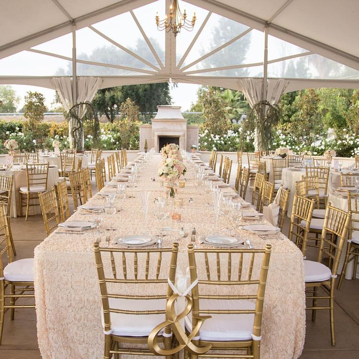 "Alluring Events + Design på Instagram: ""HOLY ROMANTIC! The soft linens, gold chivari chairs, gorgeous chandelier, bistro lighting + European fireplace, I mean..  Tap for vendor credits ✨ ••• #tent #tentedwedding #chandelier #fireplace #romantic #marketlighting #bistrolighting #weddinglighting #latavola #gold #blush #chivarichairs"