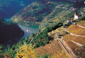 Coming soon: Porto & Douro wine