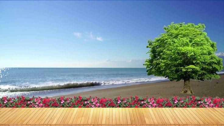 Goa sea beach famous beach of india by jonystarhill hd