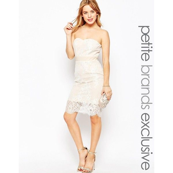 Paper Dolls Petite Bandeau Pencil Dress With Lace Overlay ($105) ❤ liked on Polyvore featuring dresses, beige, petite, petite dresses, bandeau dress, scalloped dress, cotton dress and petite cotton dresses