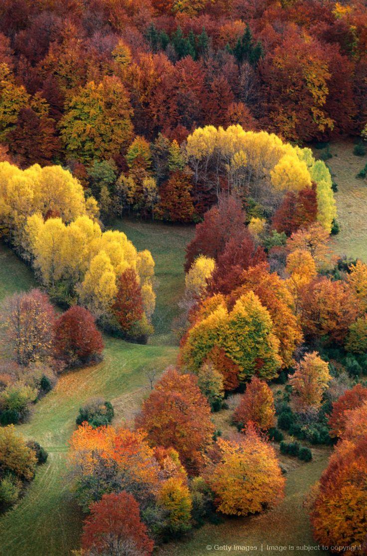 Top 7 Ideas About Autumn Fall Season On Pinterest