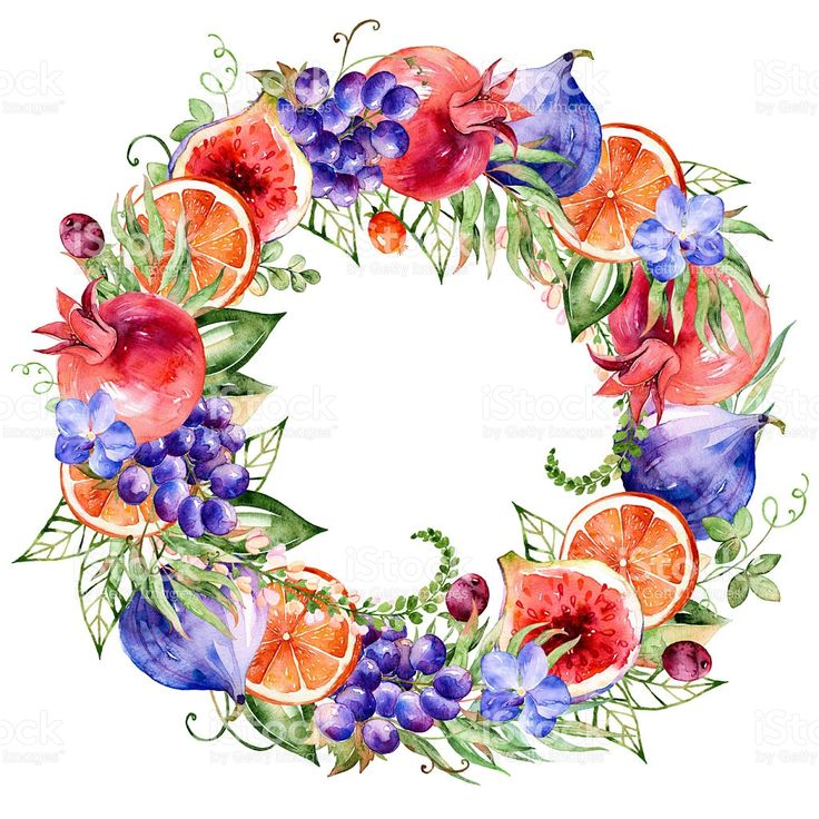 watercolor-illustration-wreath-of-flowersleaves-and-fruits-illustration-id495092742 (1024×1024)