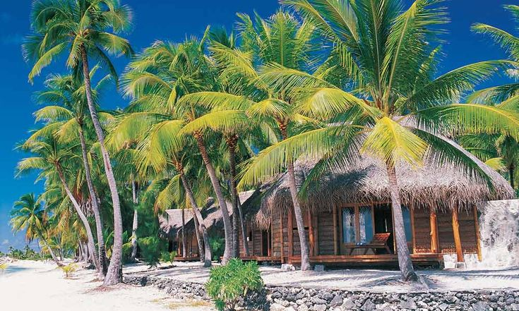 Located on an idyllic motu laden with palms and ringed with bright white-sand beaches is the luxurious Tikehau Pearl Beach Resort & Spa