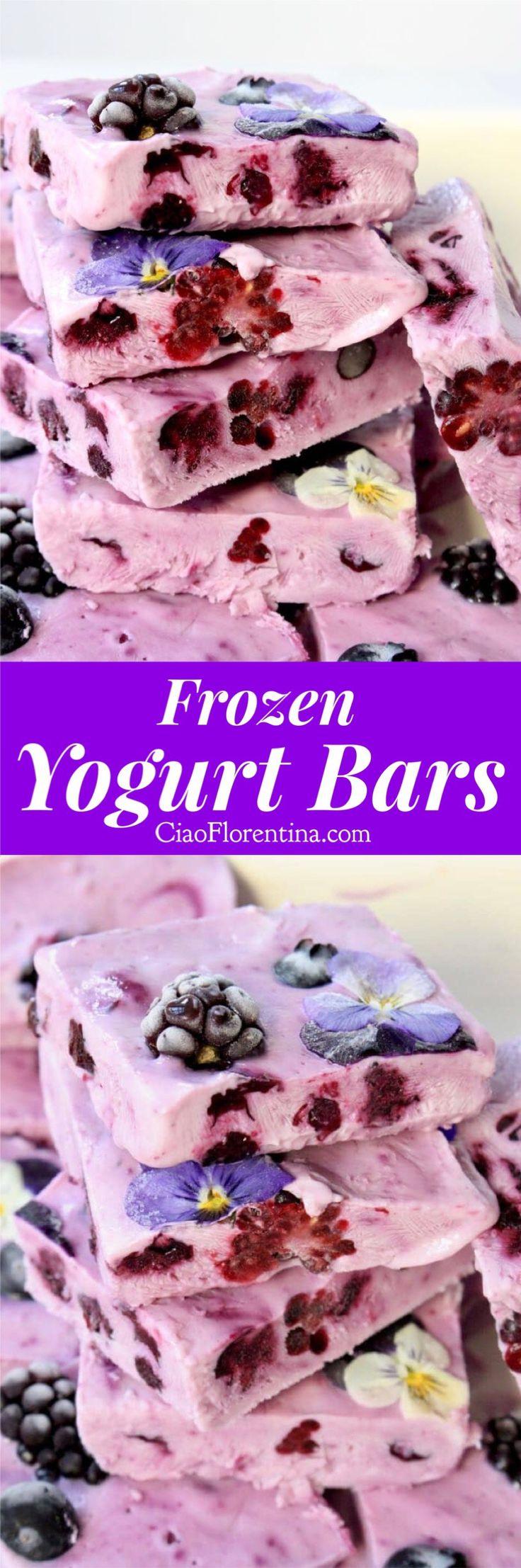 Healthy frozen yogurt bars made with sugar free, non fat creamy Greek yogurt, wild honey and berries | CiaoFlorentina.com @CiaoFlorentina