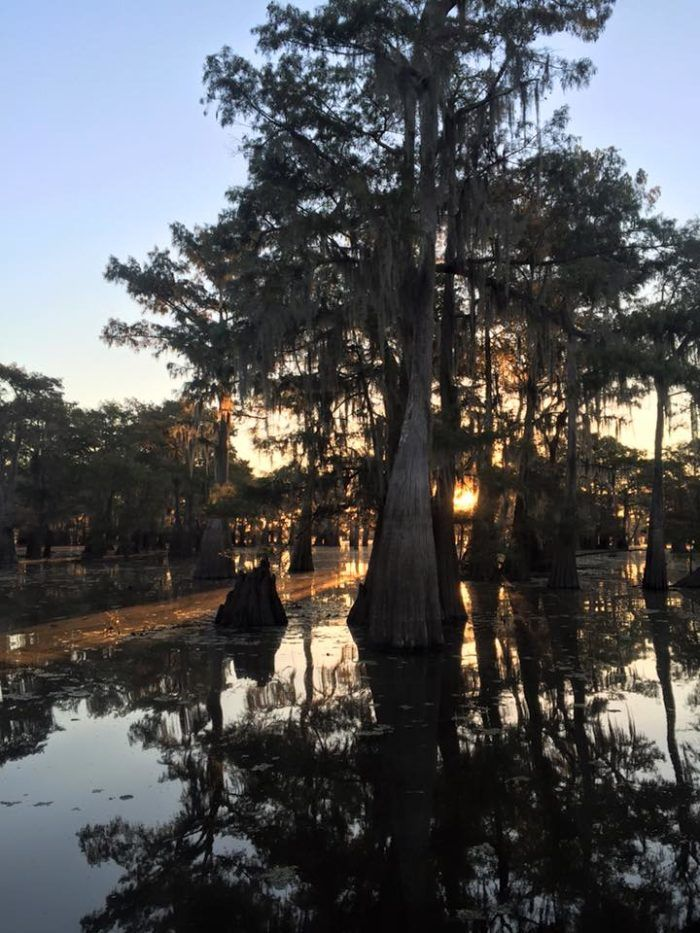 This Little Known Cove In Louisiana Will
