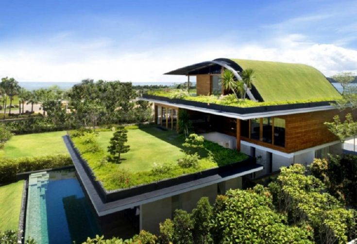 """Green roofs - Homeowners who want to """"go green"""" on their rooftops have several options -- including some that literally are green. One way to have a more environmentally friendly roof is to choose roofing materials that reflect the sun's rays. Visit www.litespeedconstruction.com for more info"""