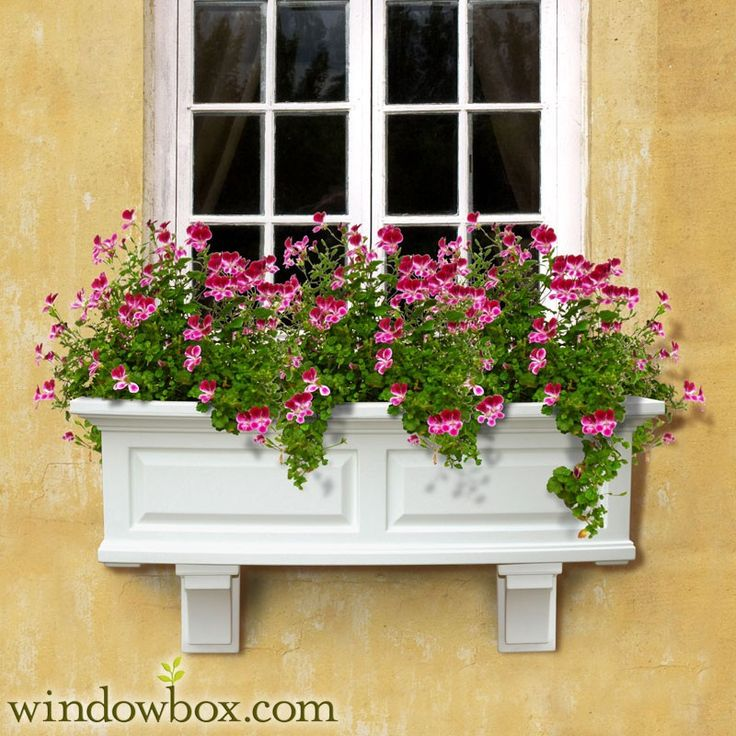 indoor window planter box ideas boxes canada flower