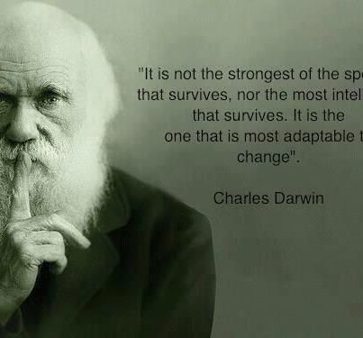 Darwin Quote On Survival