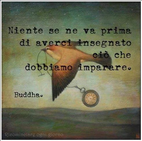 Niente se ne va prima di averci insegnato ciò che dobbiamo imparare. Buddha.