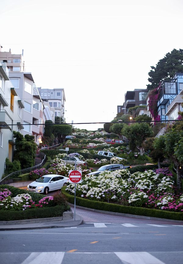 Life is not complete until you go down the crookedest road in San Francisco.  Our family did this in a 15 passenger van!