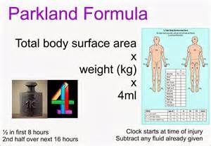 Parkland formula - Ecosia
