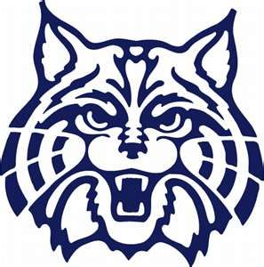 U of A Wildcats
