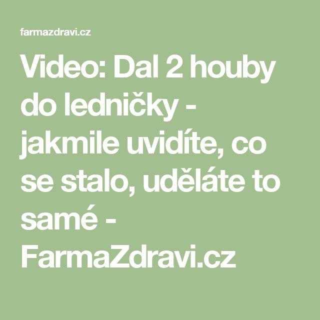 Video: Dal 2 houby do ledničky - jakmile uvidíte, co se stalo, uděláte to samé - FarmaZdravi.cz