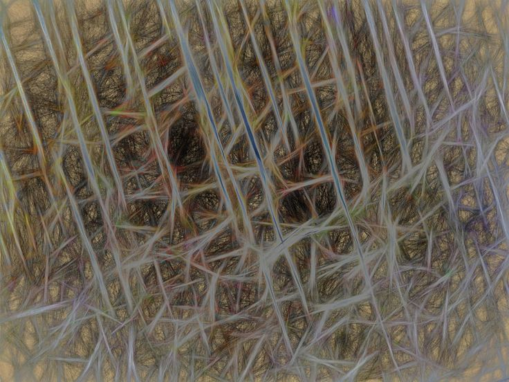 Strings Of Things by Leslie Montgomery