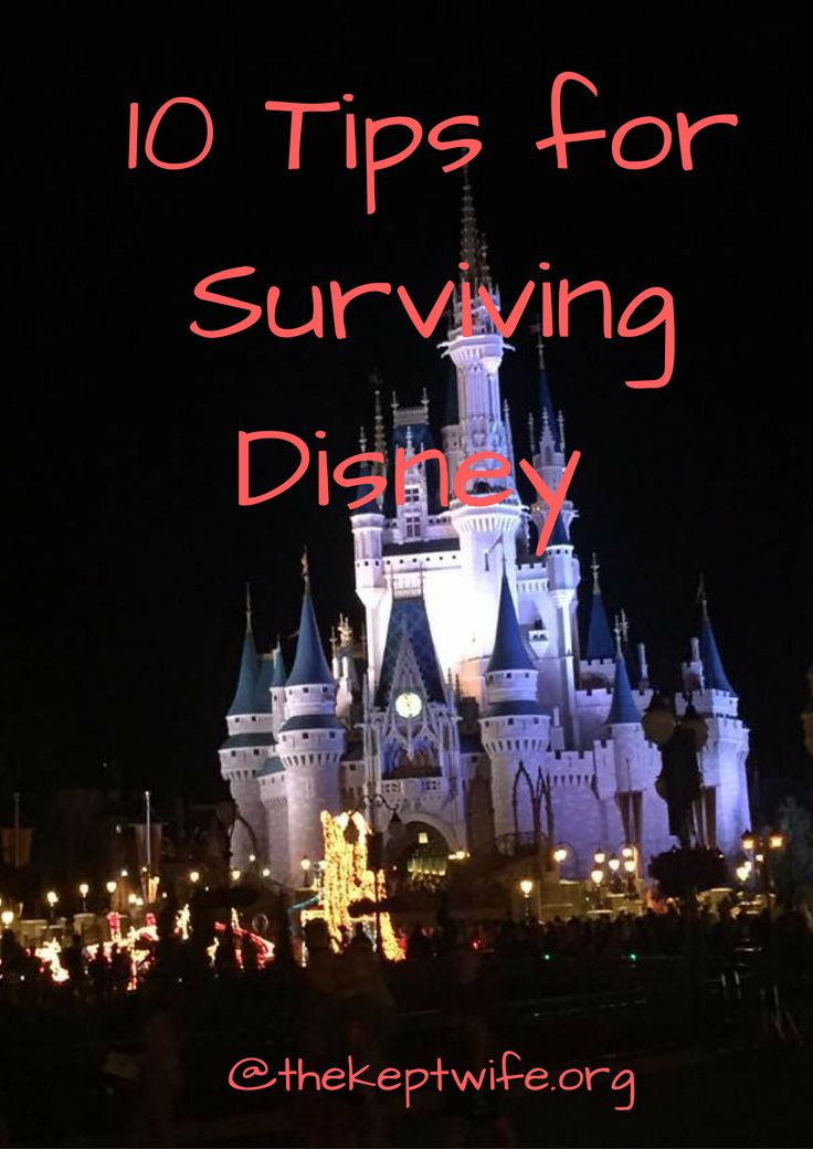 10 Tips to Survive Disney