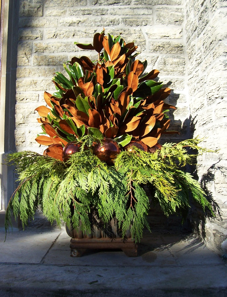 MARTHA MOMENTS: gardeningWarm Winter, Magnolias Branches, Cedar Boughs, Winter Arrangements, Amber Ornaments, Christmas Decor, Fall Arrangements, Martha Moments,  Flowerpot