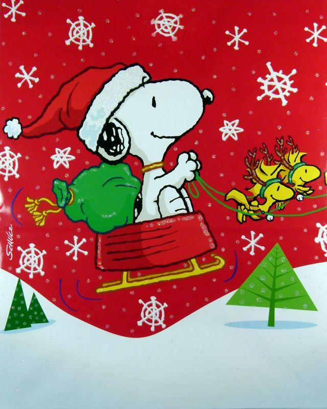 Christmas Day Quotes Christmas Quotes Snoopy Christmas Snoopy Christmas Fun