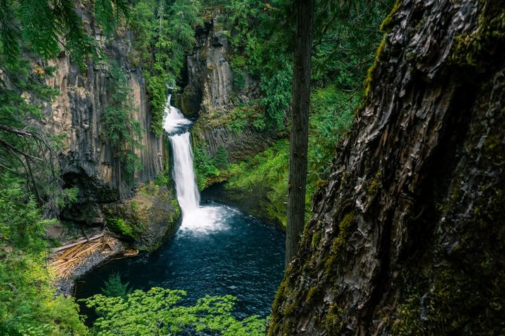 Toketee Falls is one of the most famous waterfalls in all of Oregon, renowned for the graceful columnar basalt formation framing the two-stepped falls.