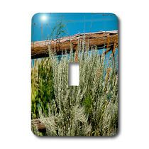 3dRose - Jos Fauxtographee Realistic - A Sage Green Weed by a Wooden Fence with a Deep Blue Sky and Green Leaves - Light Switch Covers
