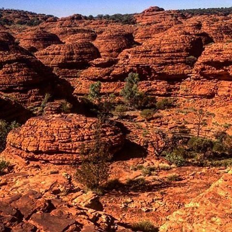 #KingsCanyon is one of @Australia's natural treasures and a paradise for hikers. Walk along the red rock cliffs and take in views of the forest of palms below. Photo: @kingscanyon via #NTaustralia by ausoutbacknt