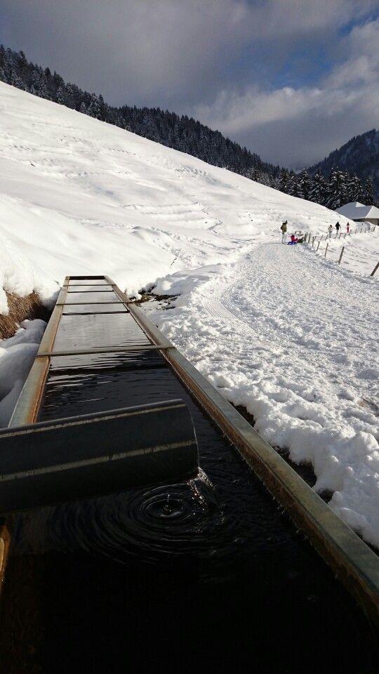 Les Paccots Switzerland - chemin pédestre