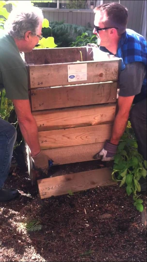 Harvesting Your Potato Box | DIY Garden Design - Grow 100 Pounds Of Potatoes #SurvivalLife www.survivallife.com