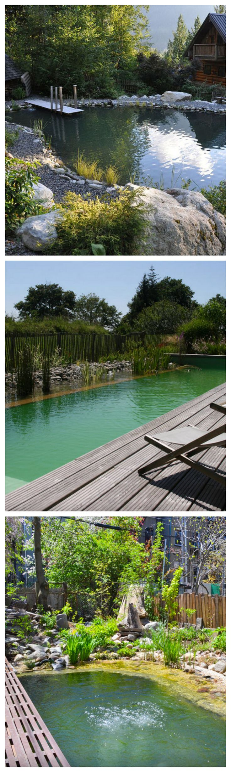 All-Natural Swimming Pools #landscaping
