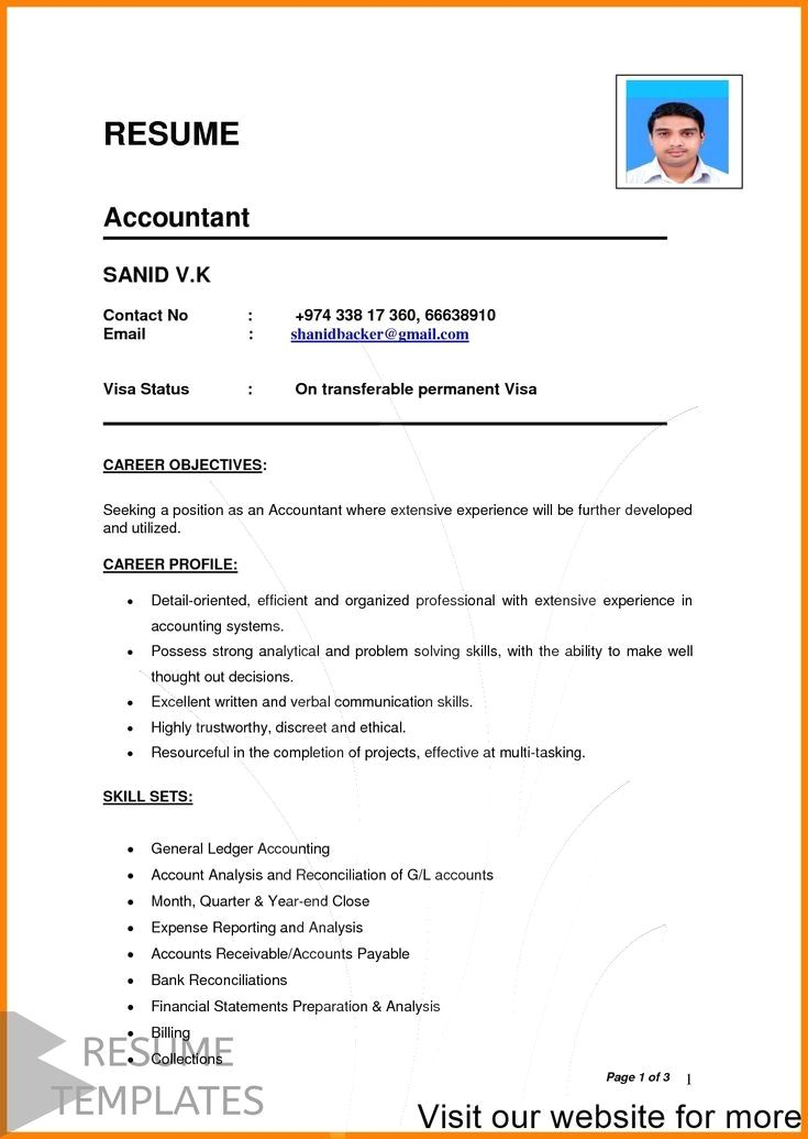 Resume Template Cv Template Professional And Creative Resume Design Cover Letter For Ms Resume Examples Professional Resume Examples Basic Resume Examples