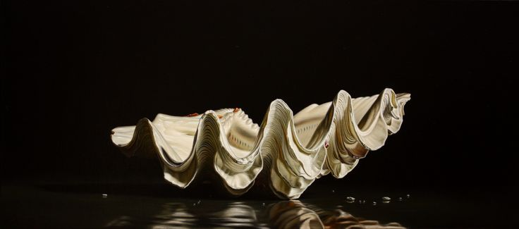 Tridacna Akirifushi oil on canvas, 40x90  www.luigipellanda.it #luigi#pellanda#tridacna#darkness