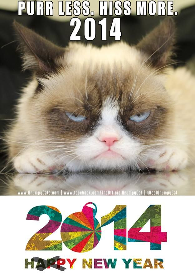 db1ef9683c7eb44f84944b47f4e01021 grumpy kitty grumpy cat meme 78 best new year images on pinterest chinese new years, roosters