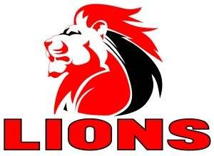 Golden Lions Rugby bed linen - Google Search