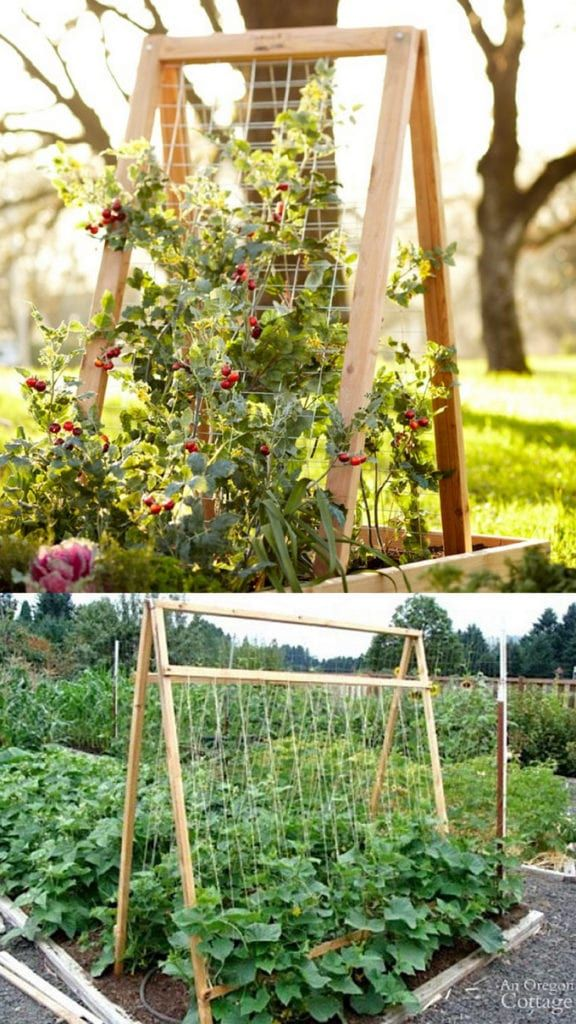 24 Easy Diy Garden Trellis Ideas Plant Structures A Piece Of Rainbow In 2020 Diy Garden Trellis Garden Trellis Designs Vegetable Trellis