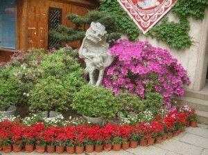 клумба своими руками, Красивые и оригинальные клумбы, Людмила Ананьина,клумбы, клумбы фото, клумба своими руками,beds,flower gardens,оформление клумб, клумбы на даче,клумбы и цветники, цветочные клумбы