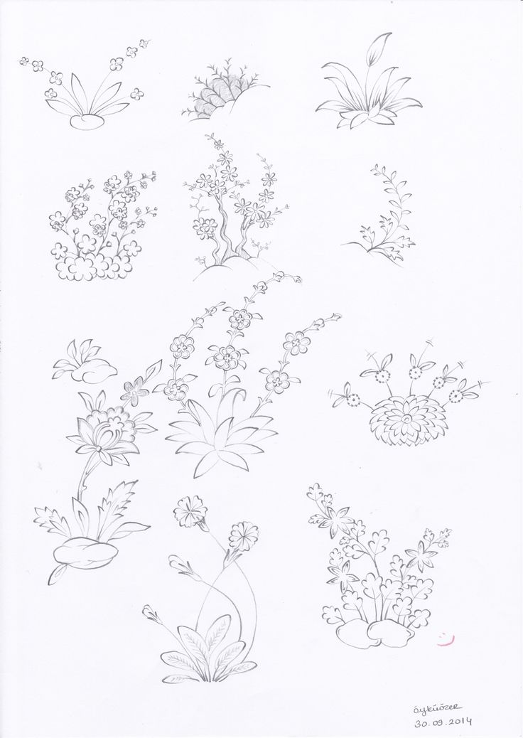 Plants and flowers 6