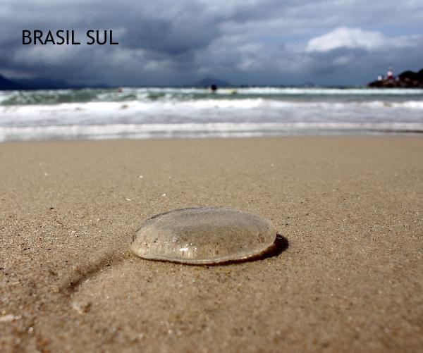 Libro de fotos del sur de Brasil, principalmente las playas de Santa Catarina. // Photo book with images from south Brazil, mainly from Santa Catarina.