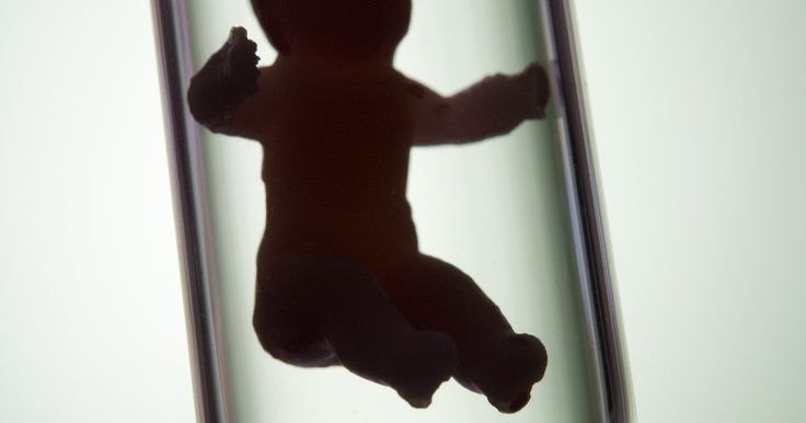 Sintomas após fertilização in vitro. Os sintomas de gravidez que podem ocorrer após a Fertilização in Vitro (FIV) não são diferentes de sintomas de início de gravidez comuns. Uma vez que os embriões são transferidos de volta para o útero, se a gravidez ocorrer, seguirá como qualquer outra. No entanto, uma mulher que se submeteu a uma FIV deve interpretar qualquer sintoma que ...
