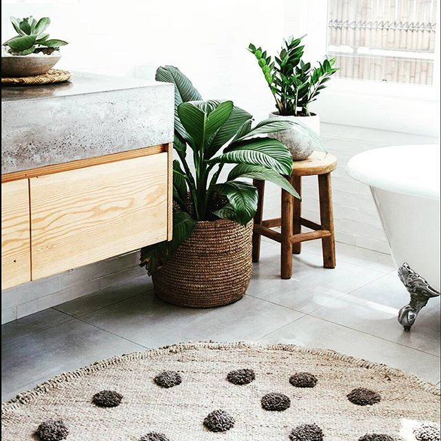 25+ Best Ideas About Bathroom Plants On Pinterest