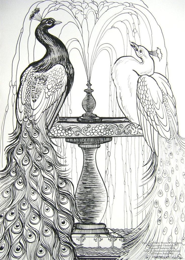Blue and White Peacocks by HouseofChabrier on DeviantArt