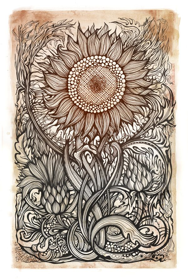 I love doodling like this, but in a much more simplistic form. I love the intricacy in this, and the dedication/focus in completing it.