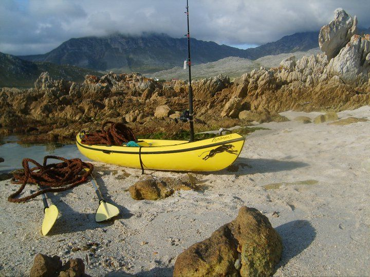 kayaking in Pringle bay South Africa