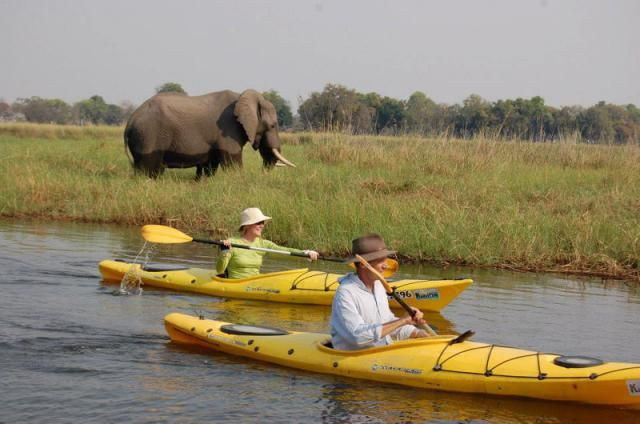 Explore the endless tranquil waterways and beautiful lagoons the Okavango Delta in Botswana has to offer. Any questions? Just drop us a line: info@gondwanatoursandsafaris.com